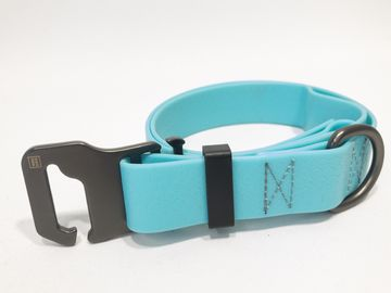 WAUDOG Dog Collar 20mm, 25-50cm Glows in the dark